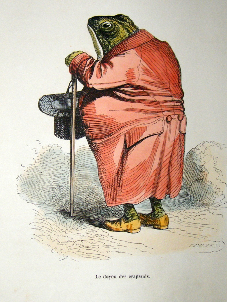 Vintage image of a frog wearing a robe and cane.  With top hat