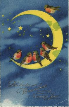 vintage crescent moon with birds