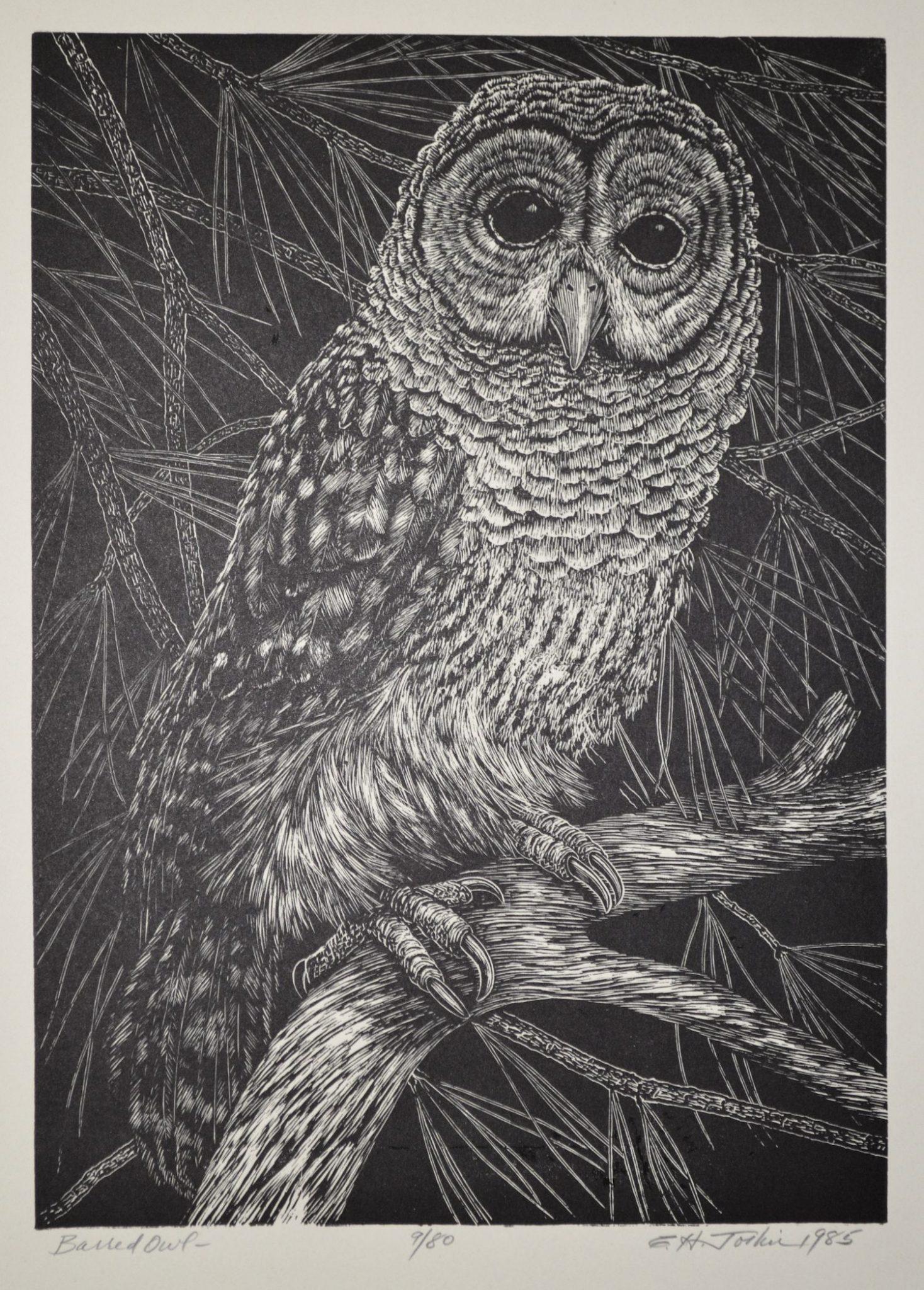 public domain vintage owl image 2 | Free Vintage Illustrations
