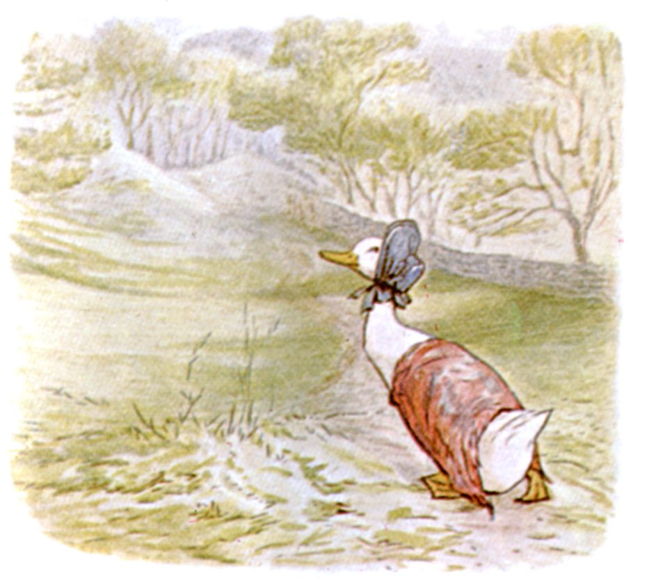 Public domain vintage children's book illustration from Beatrix Potter paddleduck