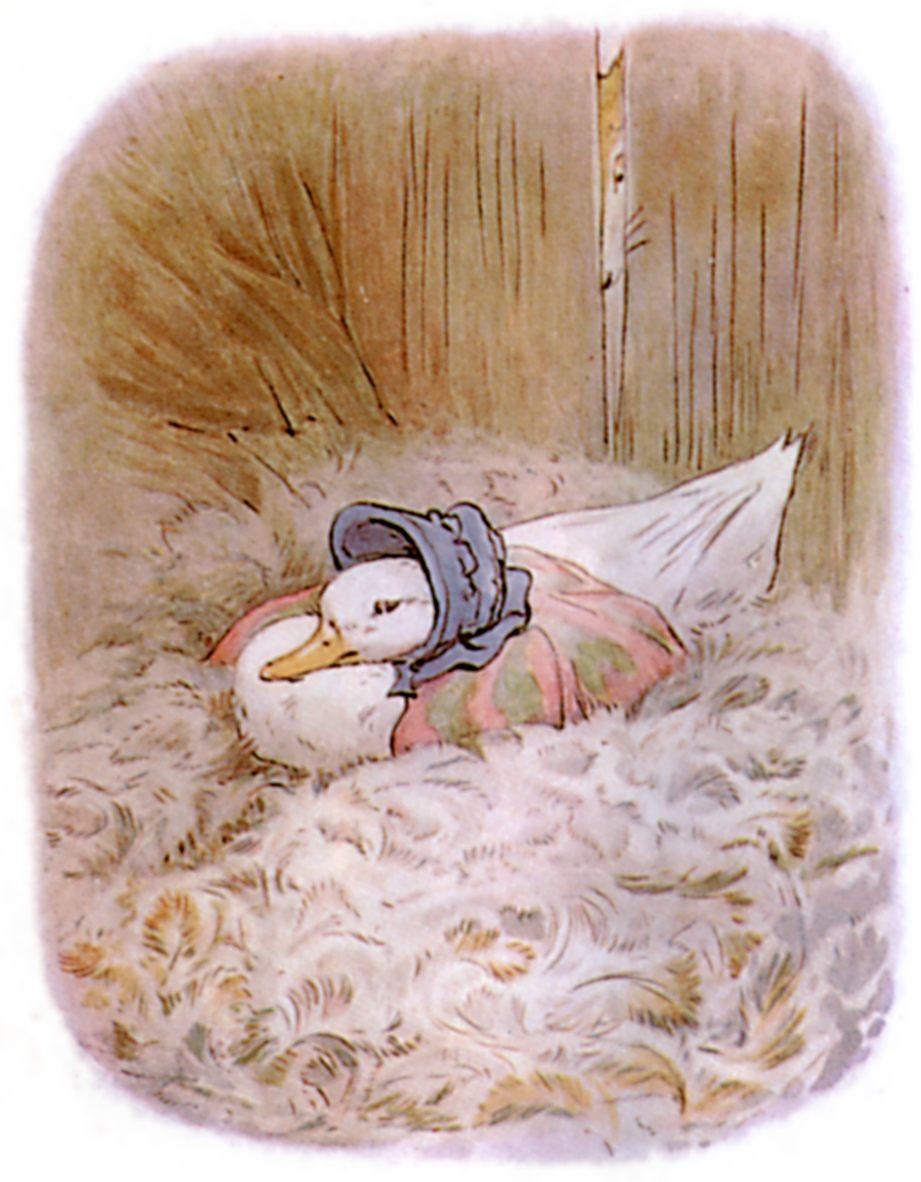 free public domain vintage illustration of ducks beatrix potter jemima puddleduck 3