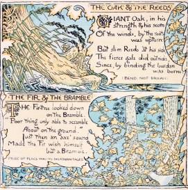 public domain oak tree aesop illustration from vintage childrens books