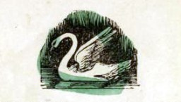 public domain swan illustration vintage childrens books