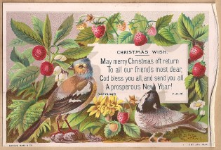 A public domain vintage seasonal greeting card with leaves, flowers, fruit and birds.