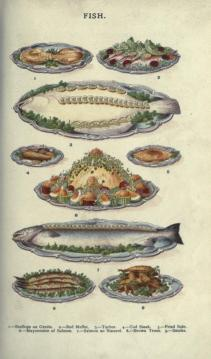 A free public domain vintage illustration of seafood