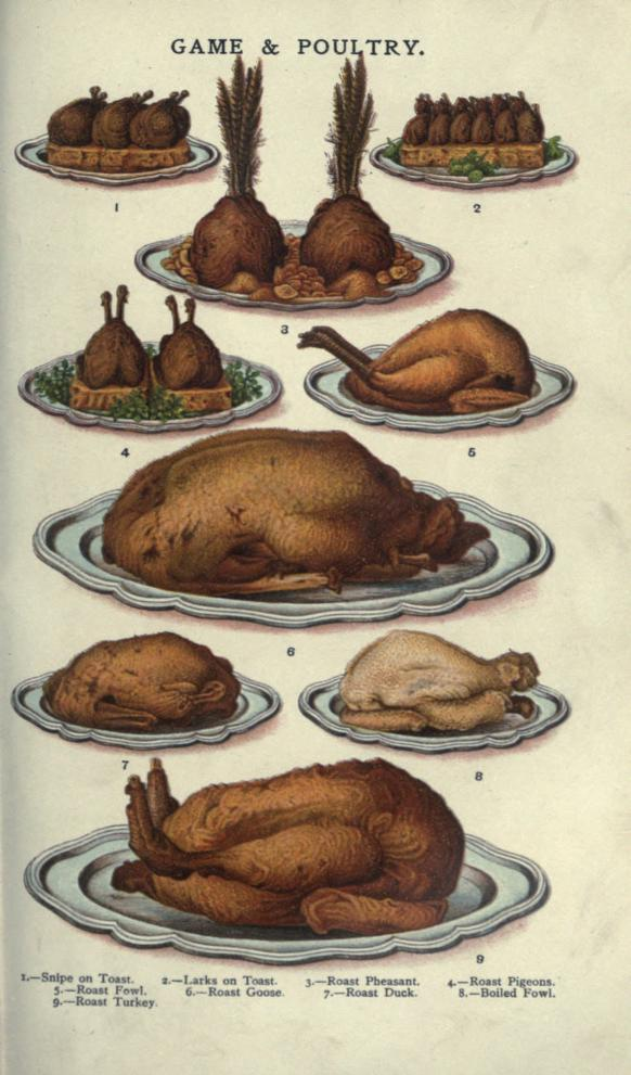 A free public domain vintage illustration of poultry and turkey roast food