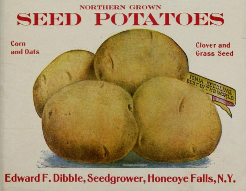 This is a free vintage illustration of an antique potato seed catalog cover