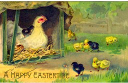 This is a Free Vintage Illustration of an Easter Chicken and Chicks from an Antique Easter Postcard