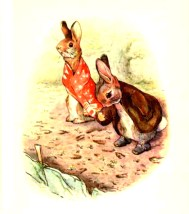 free vintage illustration of beatrix potter benjamin bunny 7