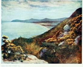 free vintage illustrations of early 20th century ireland 7
