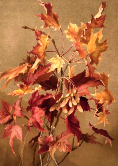 19th Century Fall Illustration of Autumn Leaves