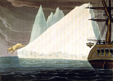 Public domain iceberg illustrations with polar bear. 19th century!