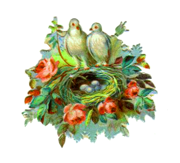 Vintage bird nest clipart with two white birds