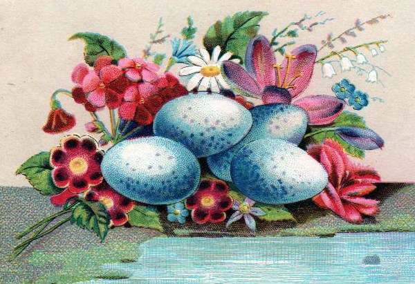Antique greeting cards archives free vintage illustrations copyright free illustrations of blue eggs m4hsunfo