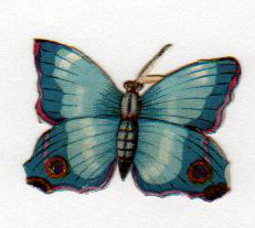 copyright-free illustrations of blue butterflies