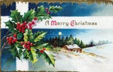christmas illustration snowy scene