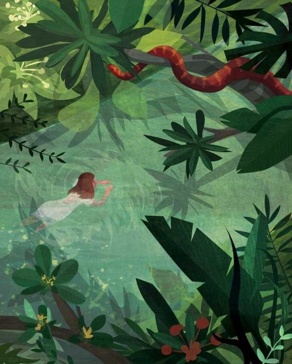 Kerry Hyndman Illustrates Inspiring Real-life Stories