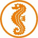 Schwimmkurs Harzgerode - Seepferdchen