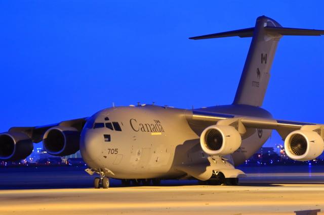 カナダ軍 Boeing C-17 177705 函館空港 航空フォト | by wildcookieさん 撮影2016年06月25日