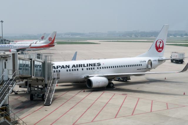 JA305J(初搭乗) - JAL (日本航空) 搭乗レビュー 寫真 | FlyTeam(フライ ...