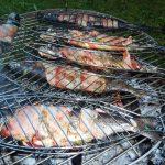 Gekräuterte Schwarzwald Forelle vom Schwenkgrill