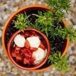 """Mittelalterliche Küche """"Frei von …"""" (I): Würziger Kompott ohne Zucker"""
