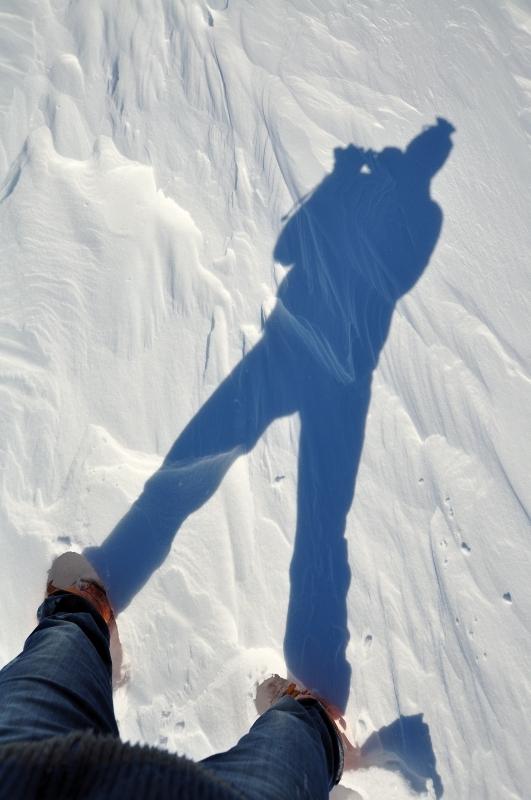 Schattenbild Grönland