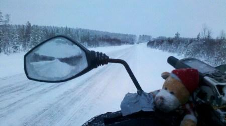 Straße durch schwedischen Wald