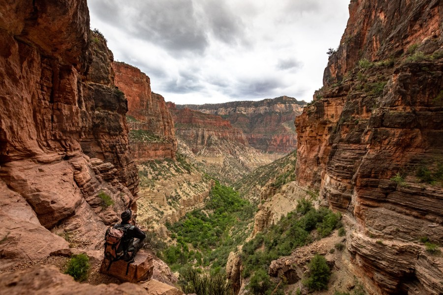 Martin mit Blick in den Grand Canyon