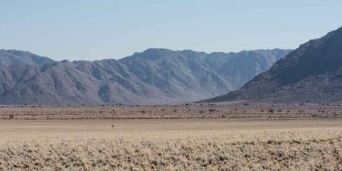 Riesige Felsberge in der Namib mit Tiervergleich