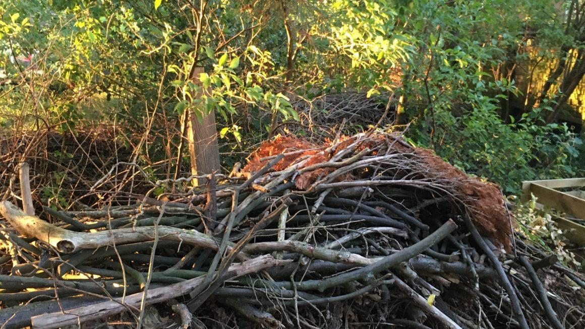 Totholz im Garten