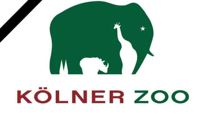 Kölner Zoo tauert um Tilda