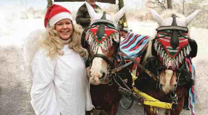 Zur Tierweihnacht nach Tripsdrill