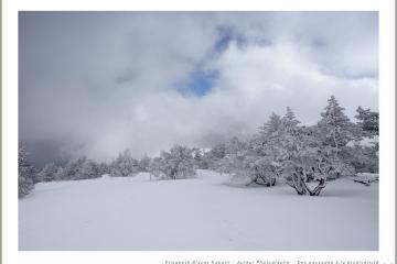 Le temps instable du Mont Aigoual