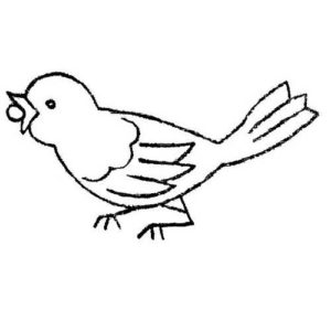 Bird Applique Or Hand Embroidery Pattern