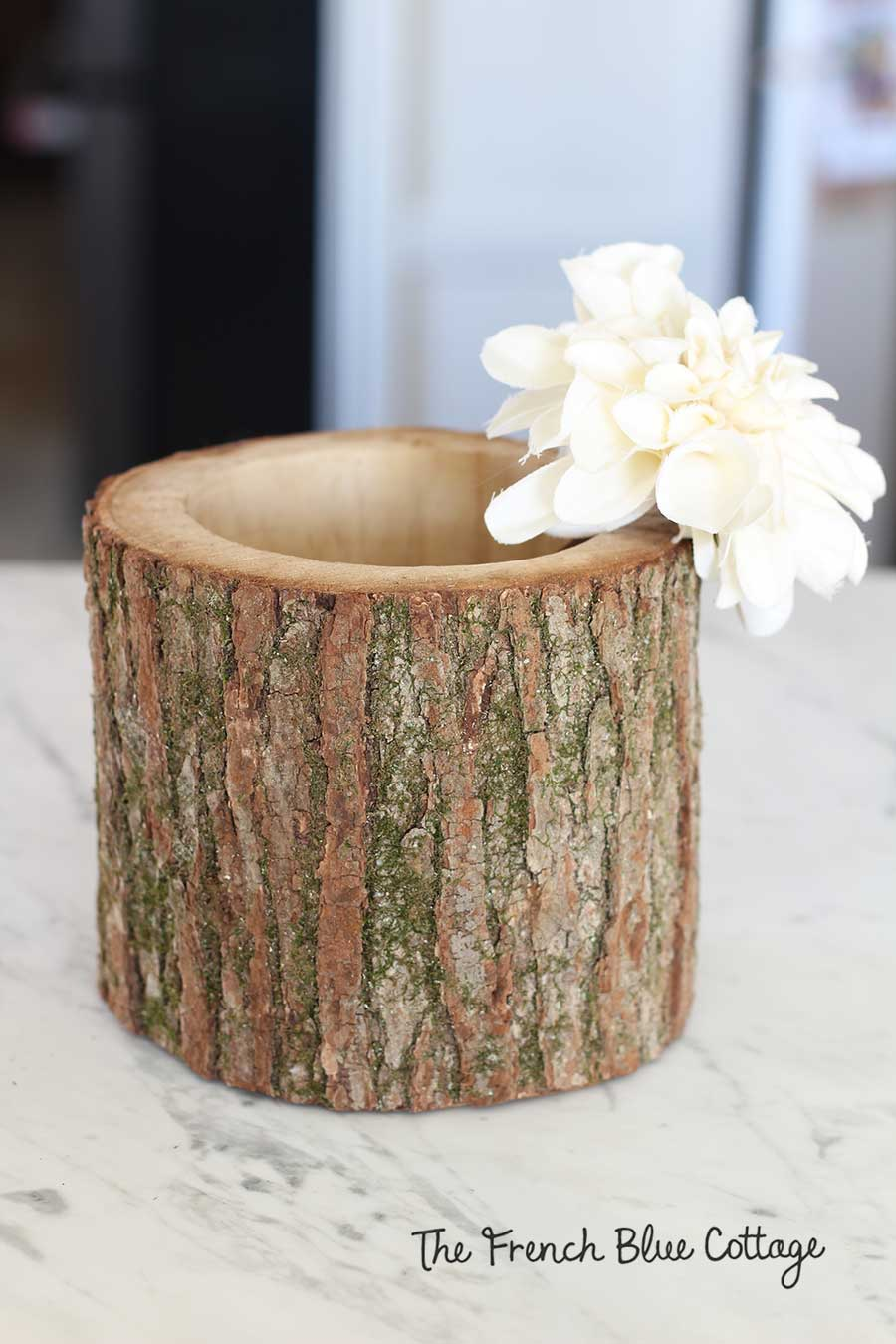 Winter ivory flower in log vase.