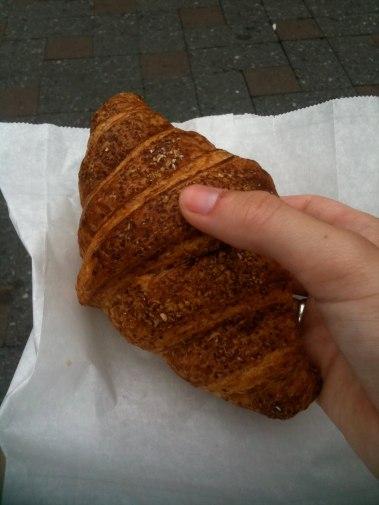 Veneral disease of the croissant