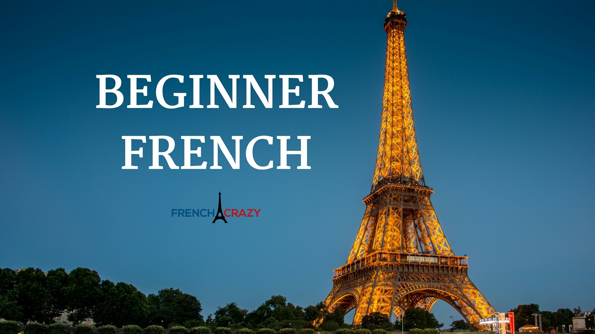 Online French For Beginners Course