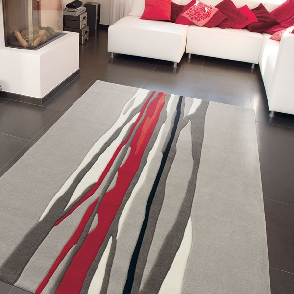 tapis de salon contemporain  Ides de Dcoration intrieure  French Decor