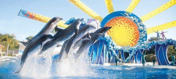 SeaWorld Orlando Parc Aquatique Seaworld Orlando Floride