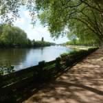 The Riverside at Chinon