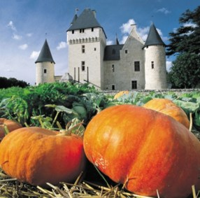 pumpkins at Chateau de Rivau