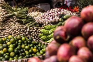 loire-day5-market