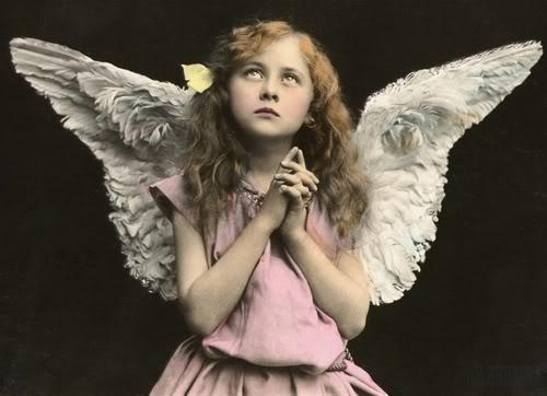 angelfillefgh