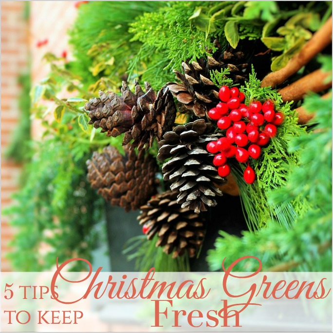 how to keep christmas greens fresh - Christmas Greens