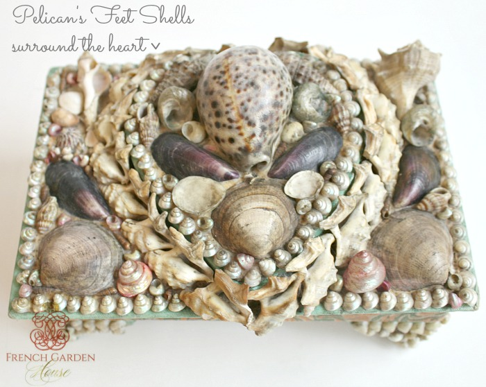 Victorian ShellworkPelicans Feet Shells