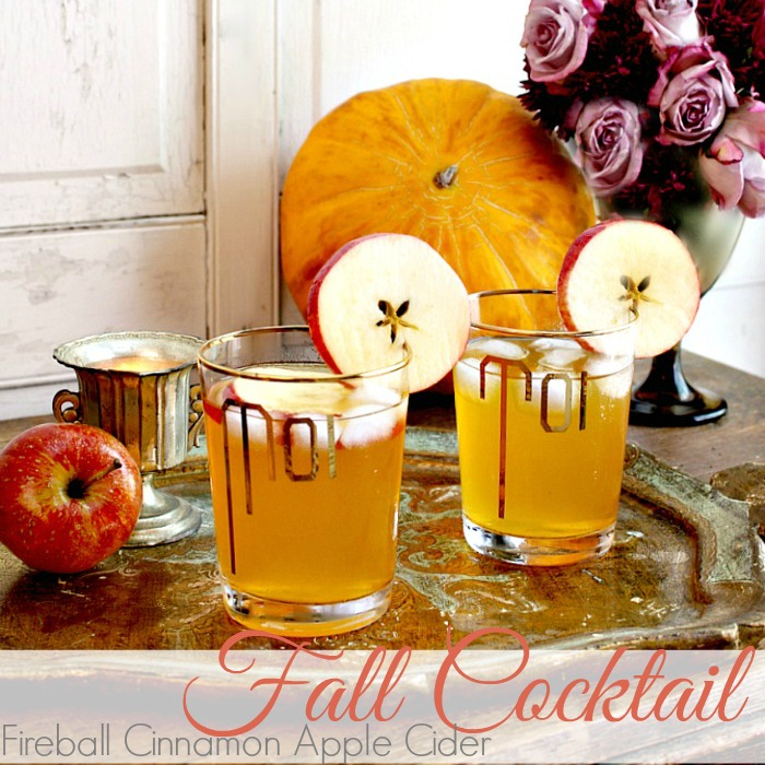 FIREBALL CINNAMON APPLE CIDER FALL COCKTAIL