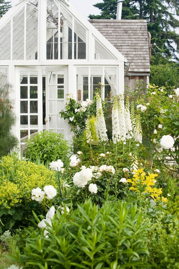 The White Garden  French Grey