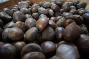 Chestnuts In French