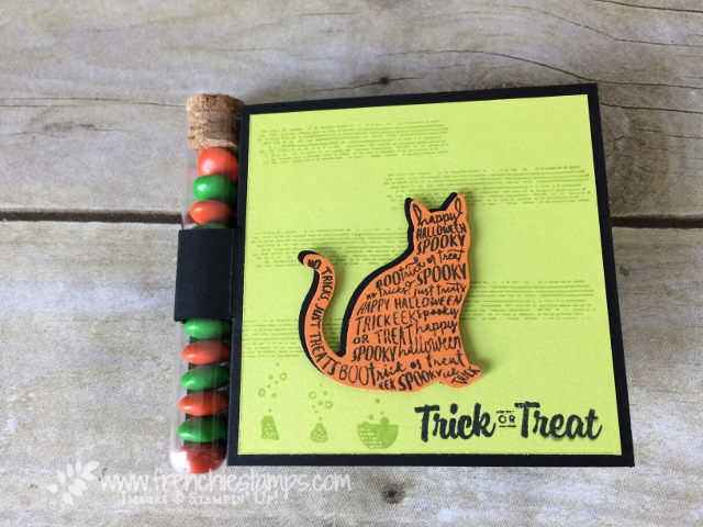 Stampin'Up! Test tube, Spooky Cat, Cat Punch,  Halloween Treat holder, Frenchiestamps